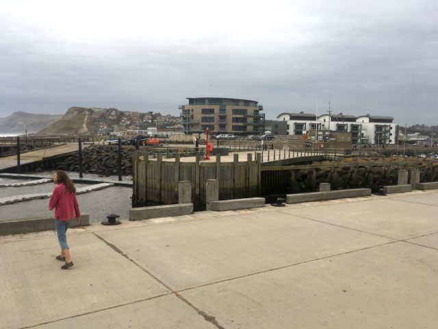 Adrienne and a part of West Bay